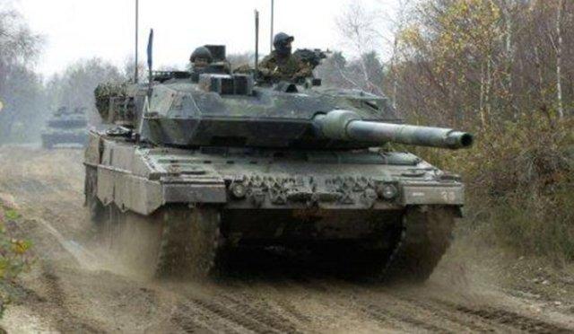 20140526 Stimmer - Leopard