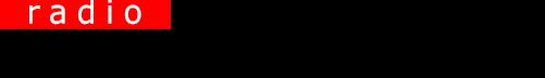 Stimme Russlands - Logo
