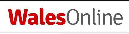 WalesOnline - Logo