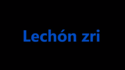 Curso de ingles - Caratula lechon ZRI